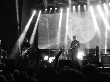 Interpol St Petersburg 11014 Galambos