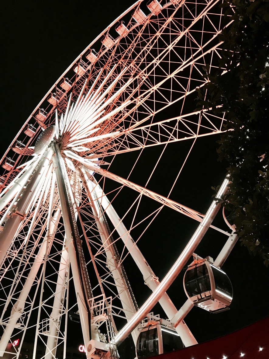 Mac_DeMarco_FerrisWheel1_Atlanta_052017