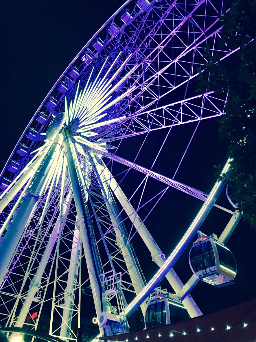 Mac_DeMarco_FerrisWheel2_Atlanta_052017